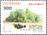 Olivier Al Akarit - Tataouine - Tunisie - Timbre Poste Tunisienne